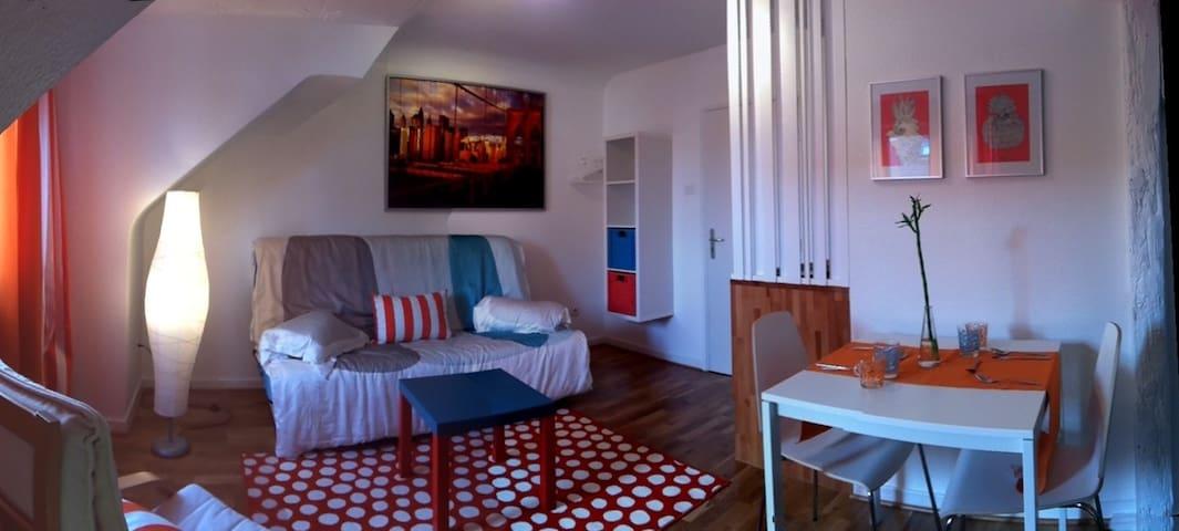 Chambre meublée Mundo - Mundolsheim - Leilighet