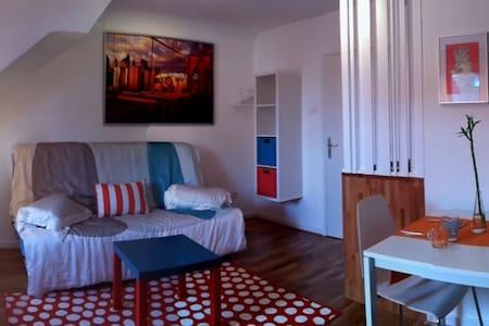 Chambre meublée Mundo - Mundolsheim - 公寓