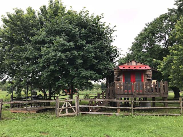 The Birds Nest tiny house at Hedgebrook Farm