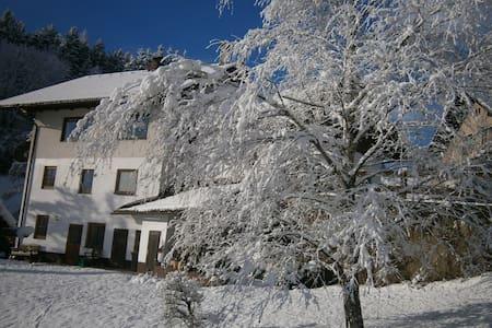 Haus Elisabeth - Paßriach