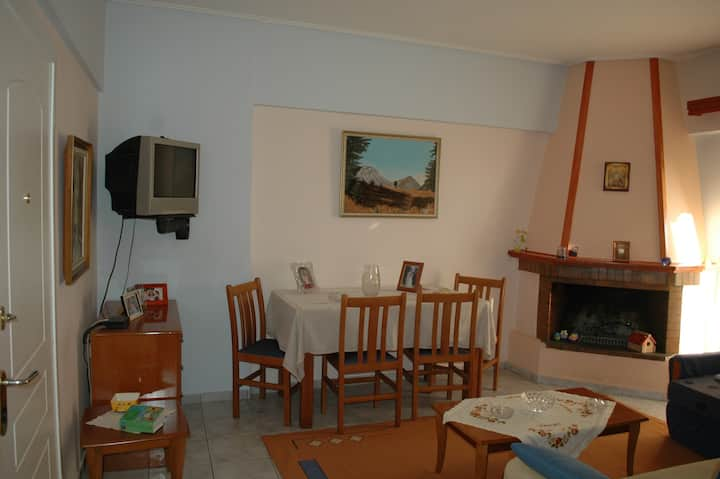 Convenient apartment near the sea