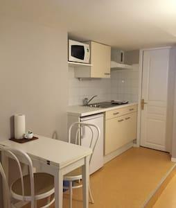 Studio rénové Lyon part-dieu - Apartment