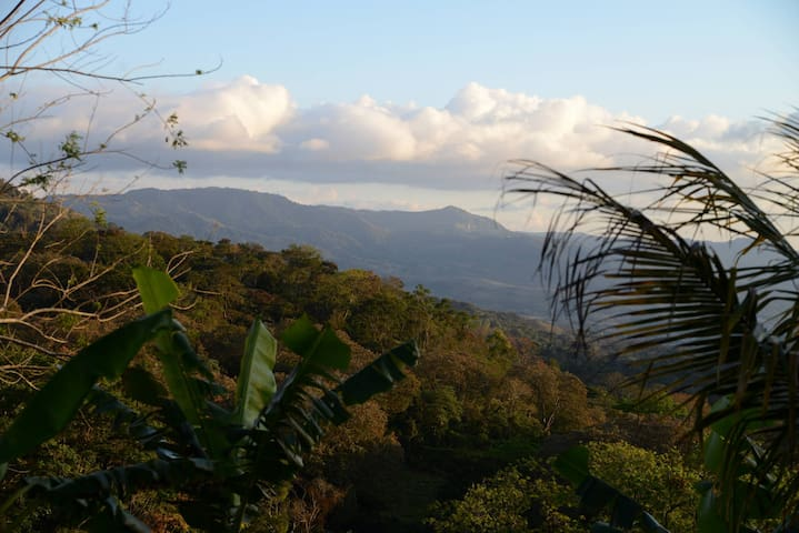 Camping on working coffee farm - Matagalpa - Jiné