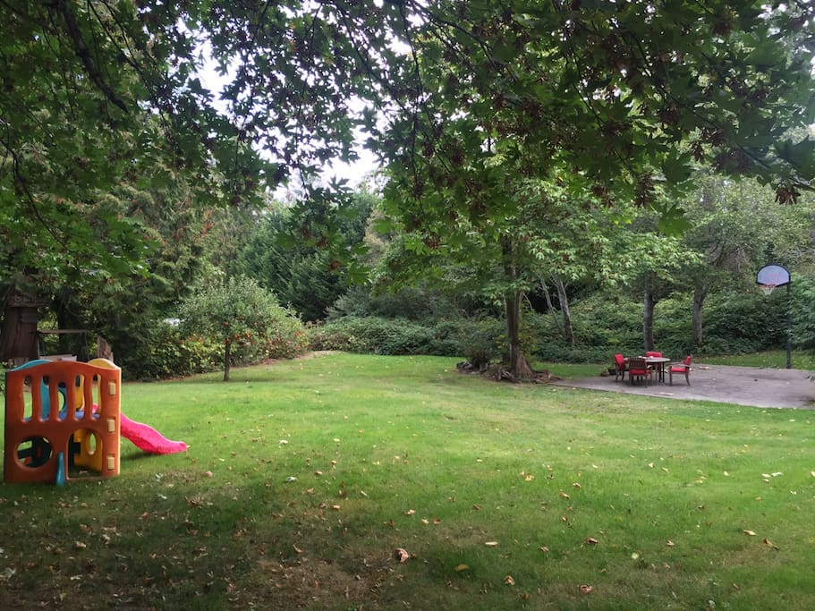 Park-like acreage with patio seating and sport court