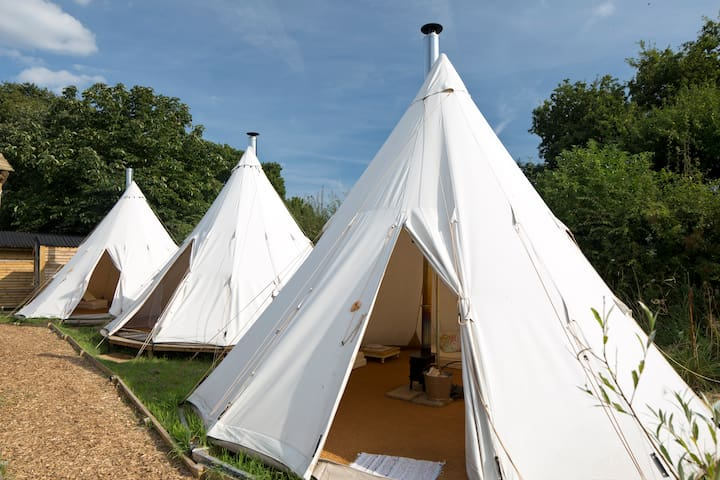 Wild Harvest Tipis and Activities - East Cottingwith - Tenda Indígena