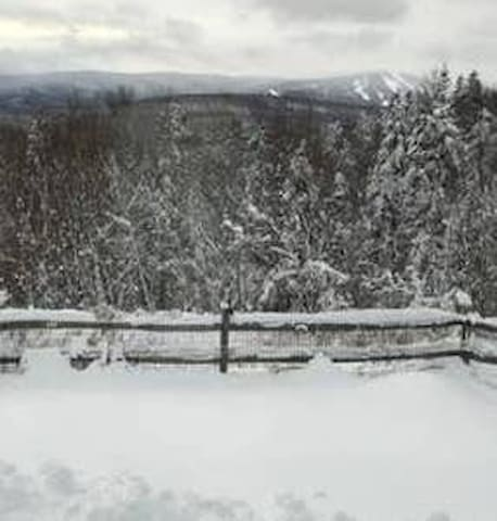 A Place in the Woods~Mount Snow~Dover, VT