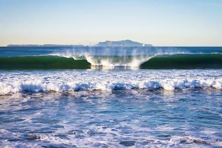 Beachfront Beauty, Walk Everywhere! - House