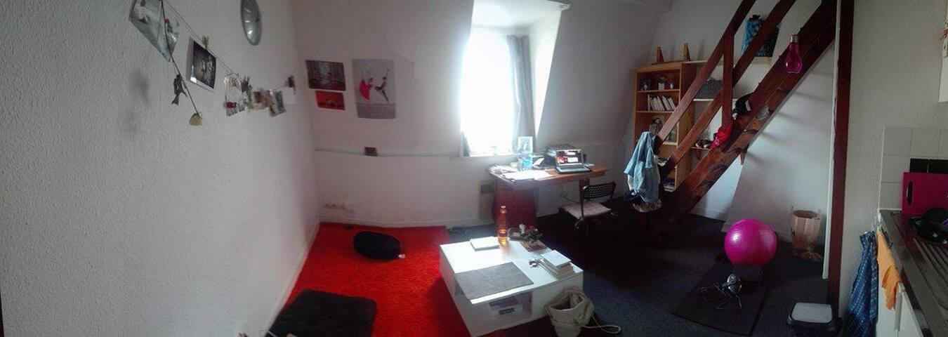 Lille centre Appartement cozy pour 2 à 4 personnes - Lille - Apartamento