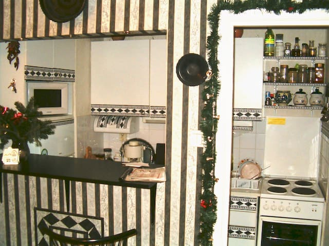 kitchen with the electric cooker