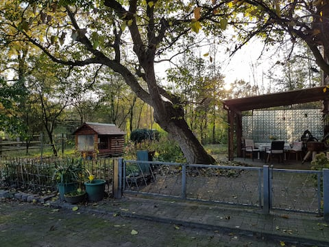 Moorhof Krempel - Apartment (85sqm)