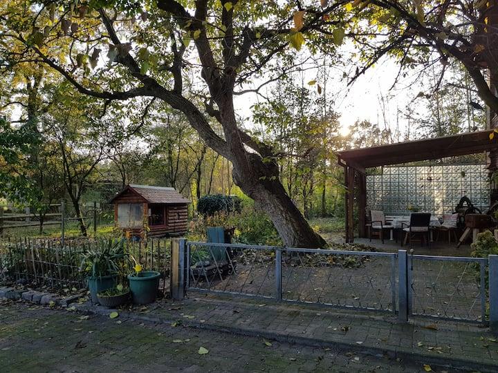 Moorhof Krempel - Ferienwohnung (85m²)