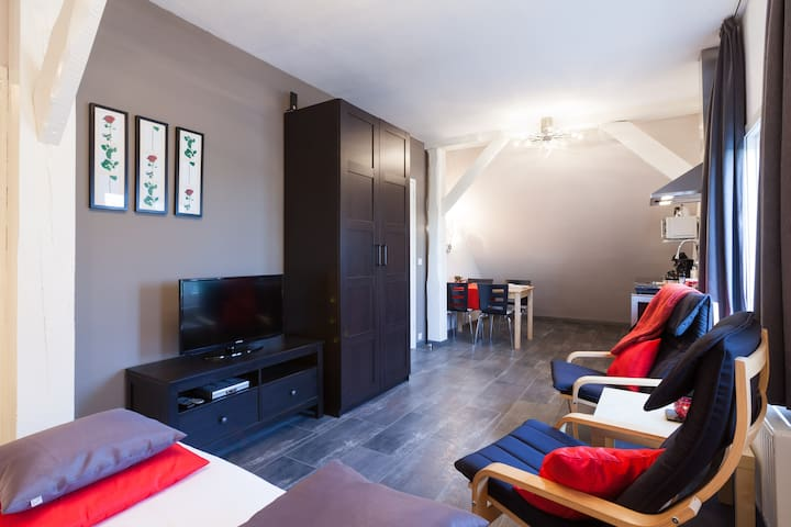 Royal appartement 1 + evt. Wellness - Beemte Broekland - Huoneisto