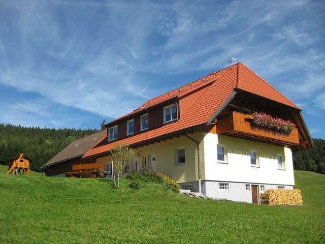 Das Sonnenstüble - Titisee-Neustadt - Appartement