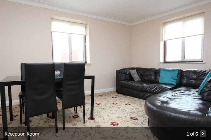 Entire flat 2 bedrooms, lounge near Zone3 tube - Londen - Appartement