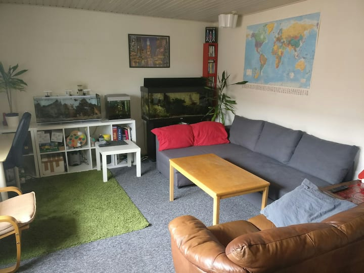 Nice and cozy flat 15 min walking to the center