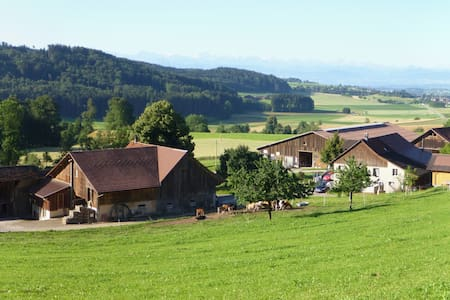 Swissfarm with a great view to the Swissmountains - Russikon