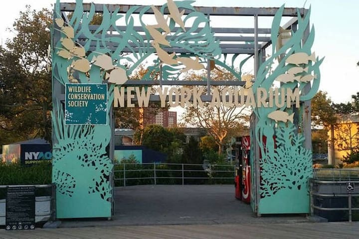 Coney Island Private Apt*** Wi Fi, LCD TV MCU Park