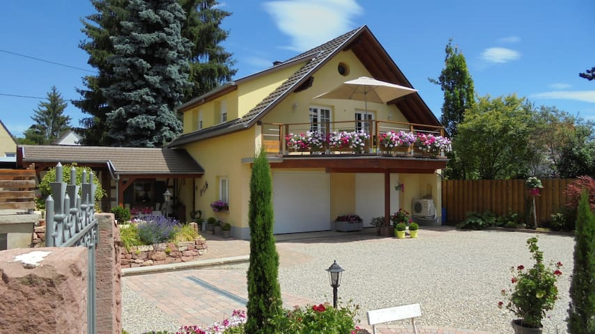 Charming gîte with garden&terrace - Benfeld - Casa
