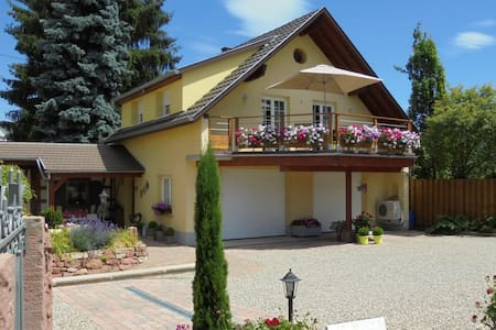 Charming gîte with garden&terrace - Benfeld - Haus