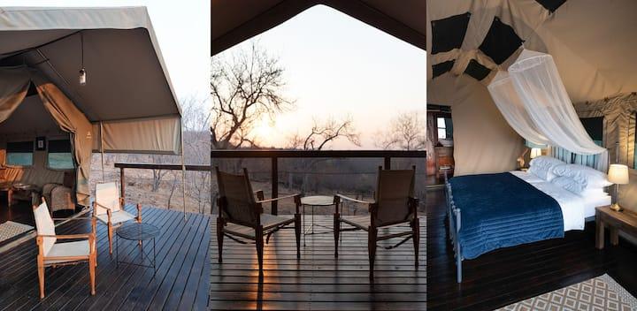 Classic Safari Tent Kingfisher