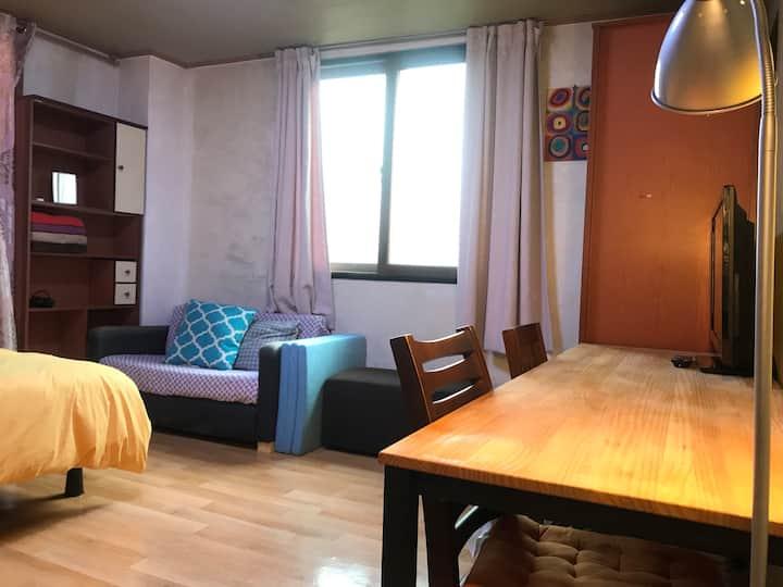 Economy cozy central apartment