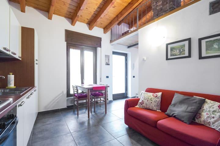 Monolocale in Corte Privata - Centro Città - Vigevano - Apartament