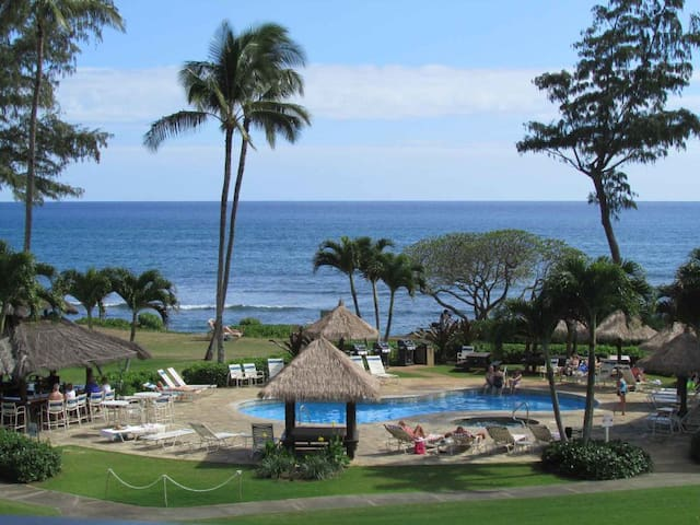 Ocean and Resort Views