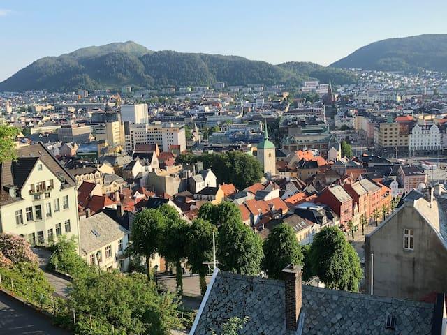 Liten leilighet i Bergens koseligste strøk