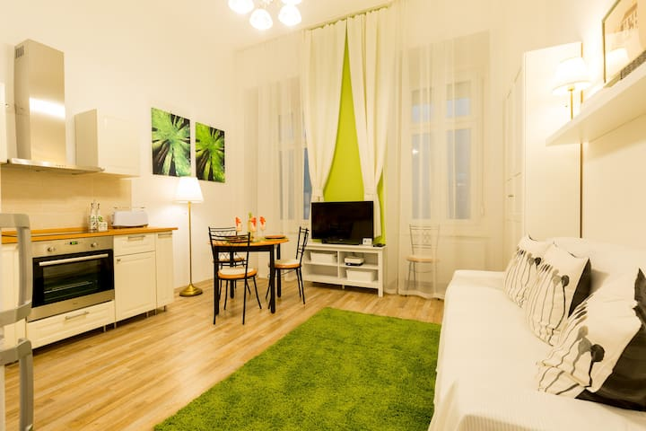 Chic one-bedroom apt next to the Synagogue