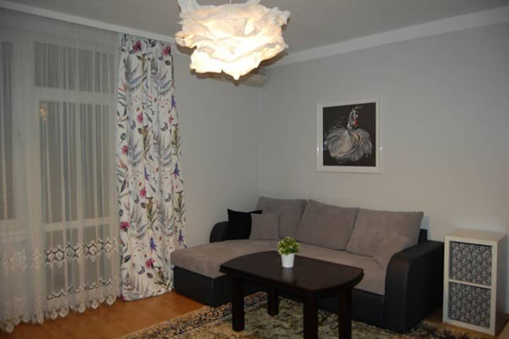 Katowice Apartment for COP24 in the city