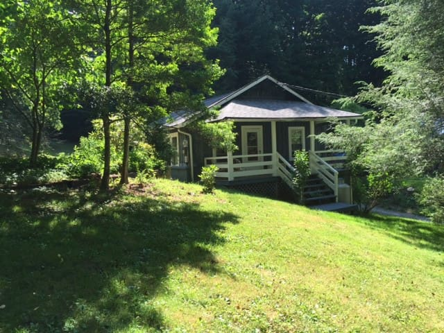 The Little Green Cottage on Hyatt Creek - Waynesville - House