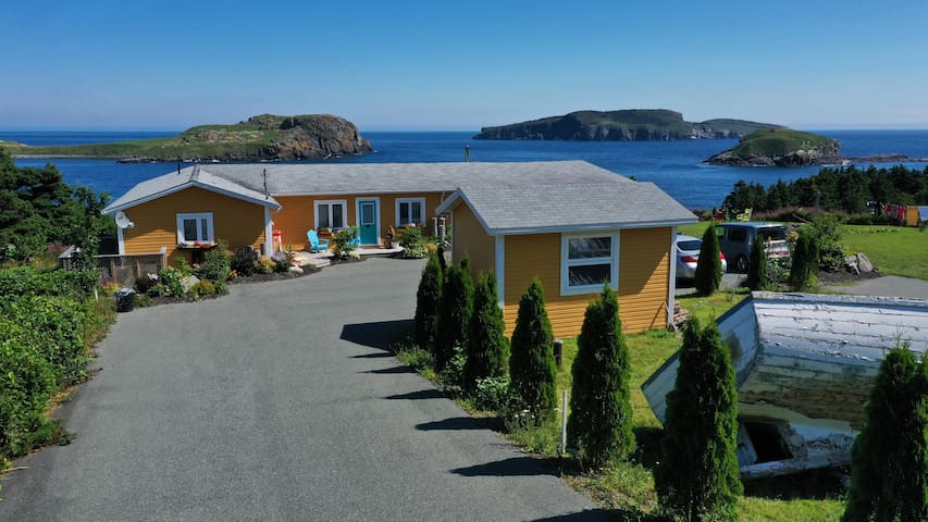 Puffin - Whale Watcher House (Open/strict rules)