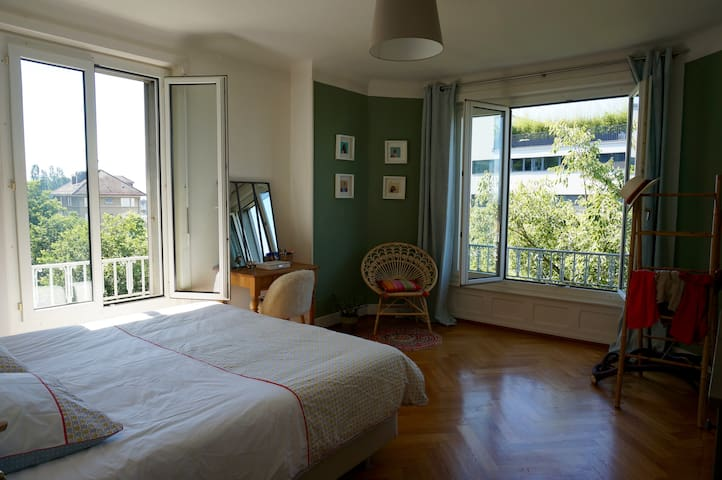 Lovely flat in center - lake view