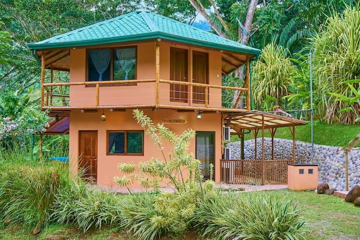 Casa Heliconia exterior shows the unique Octagonal design.