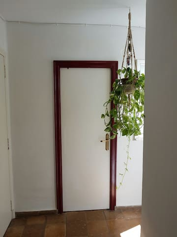 Cosy little room - València - Apartament