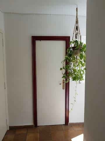 Cosy little room - València - Huoneisto