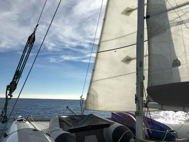 CREW ON DAY SAIL 30FT CATAMARAN AND STAY THE NIGHT