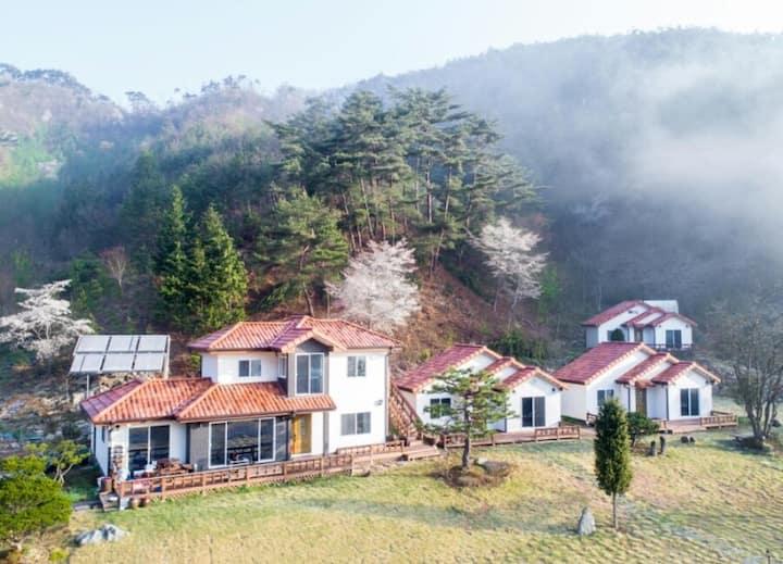정원이 예쁜 장성 편백숲속 독채 복층펜션