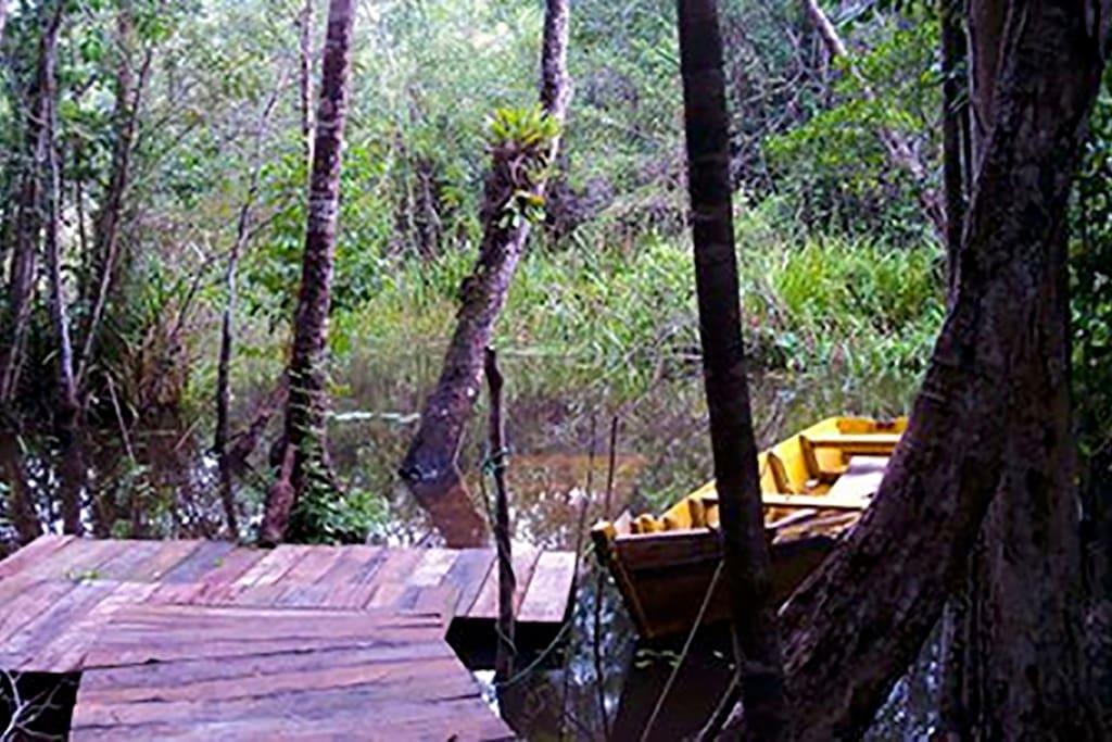 Deck a beira rio para natação e esportes náuticos. Meia hora remando de caiaque para chegar até a praia, passeio imperdível!