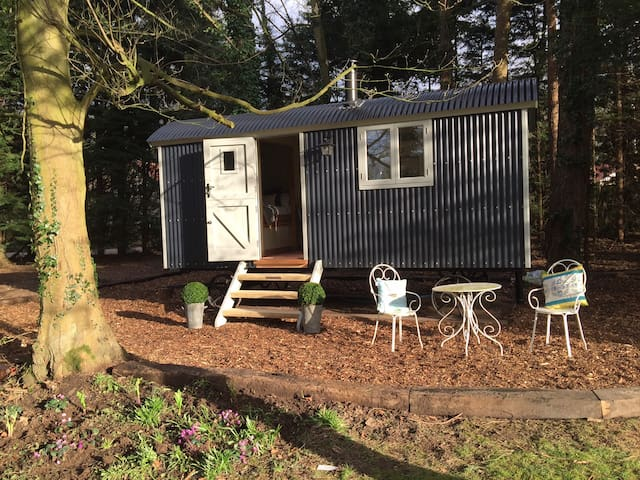 Luxury Shepherd's Hut inc Bathroom - High Kelling