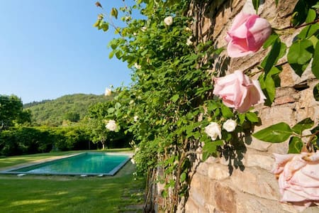 2 cottages in VILLA near Florence - Vaiano