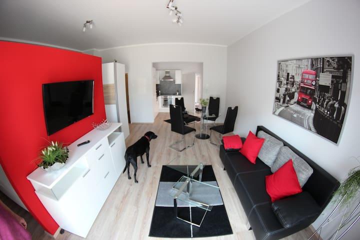Modernes Ein-Zimmer-Apartment mit Sonnenterasse - Rülzheim - Apartment