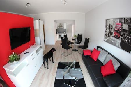 Modernes Ein-Zimmer-Apartment mit Sonnenterasse - Rülzheim - อพาร์ทเมนท์