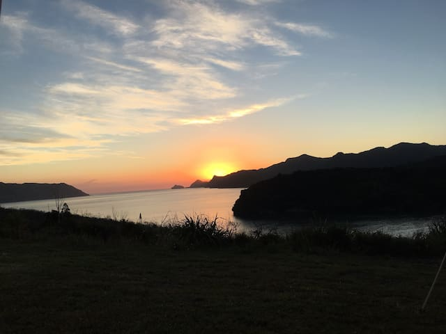 Cornwallis clifftop