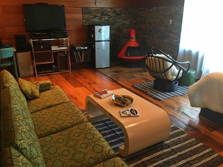 Retro Studio Loft & cabana w/ Blanco River access