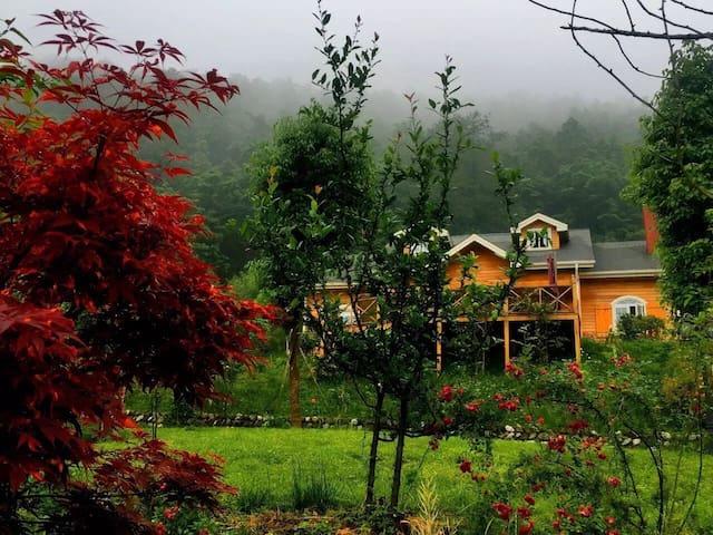 半山木屋别墅  The Mt wooden villa