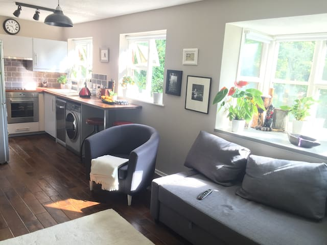 Peaceful apartment in Muswell Hill - London - Apartment