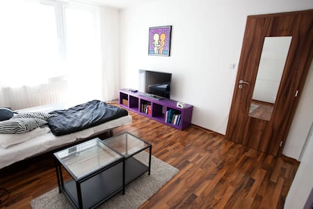 Nice flat near Brno city centre for 2 persons - Brno