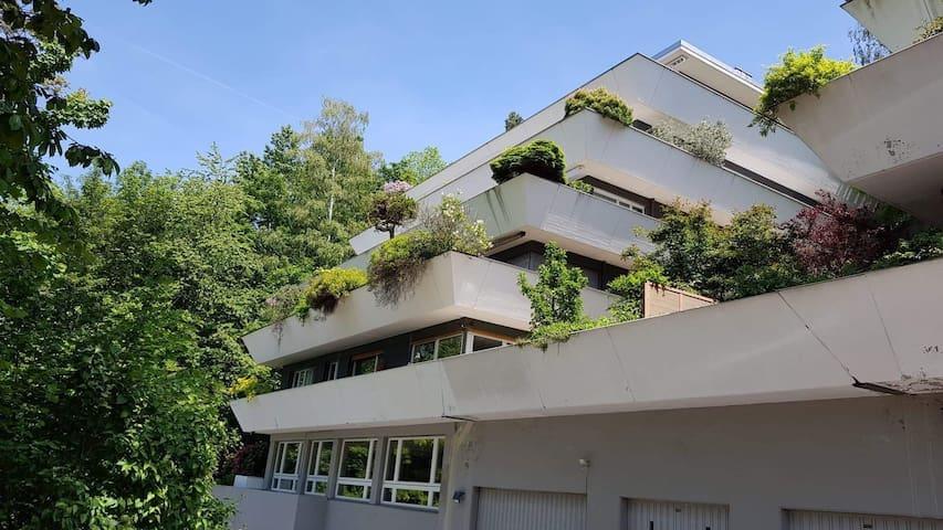 Terrace Zug