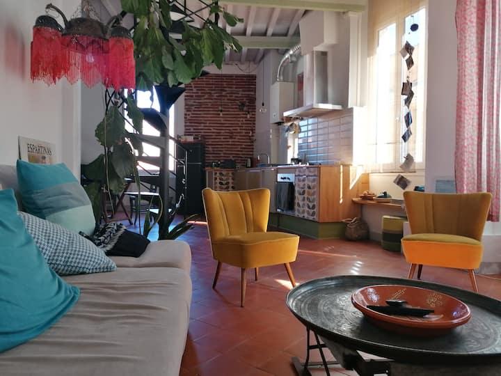 Duplex/terrasse en plein coeur de Perpignan